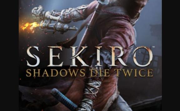 Sekiro background
