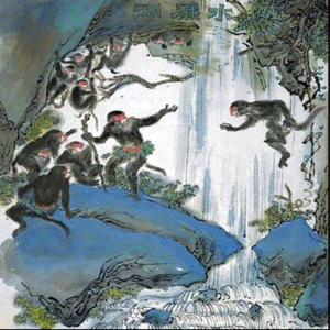Il branco di scimmie del monte Huaguo