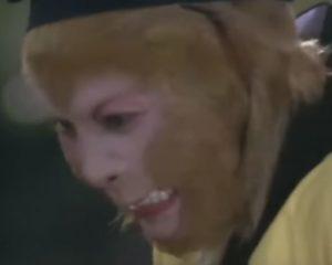 Sun Wukong Anger