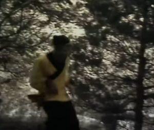 Wukong rennen durch den Wald