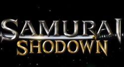 Samurai Shodown Port Swithc Front