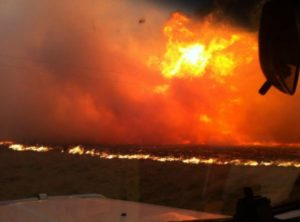 Australia Wildfire Devastation