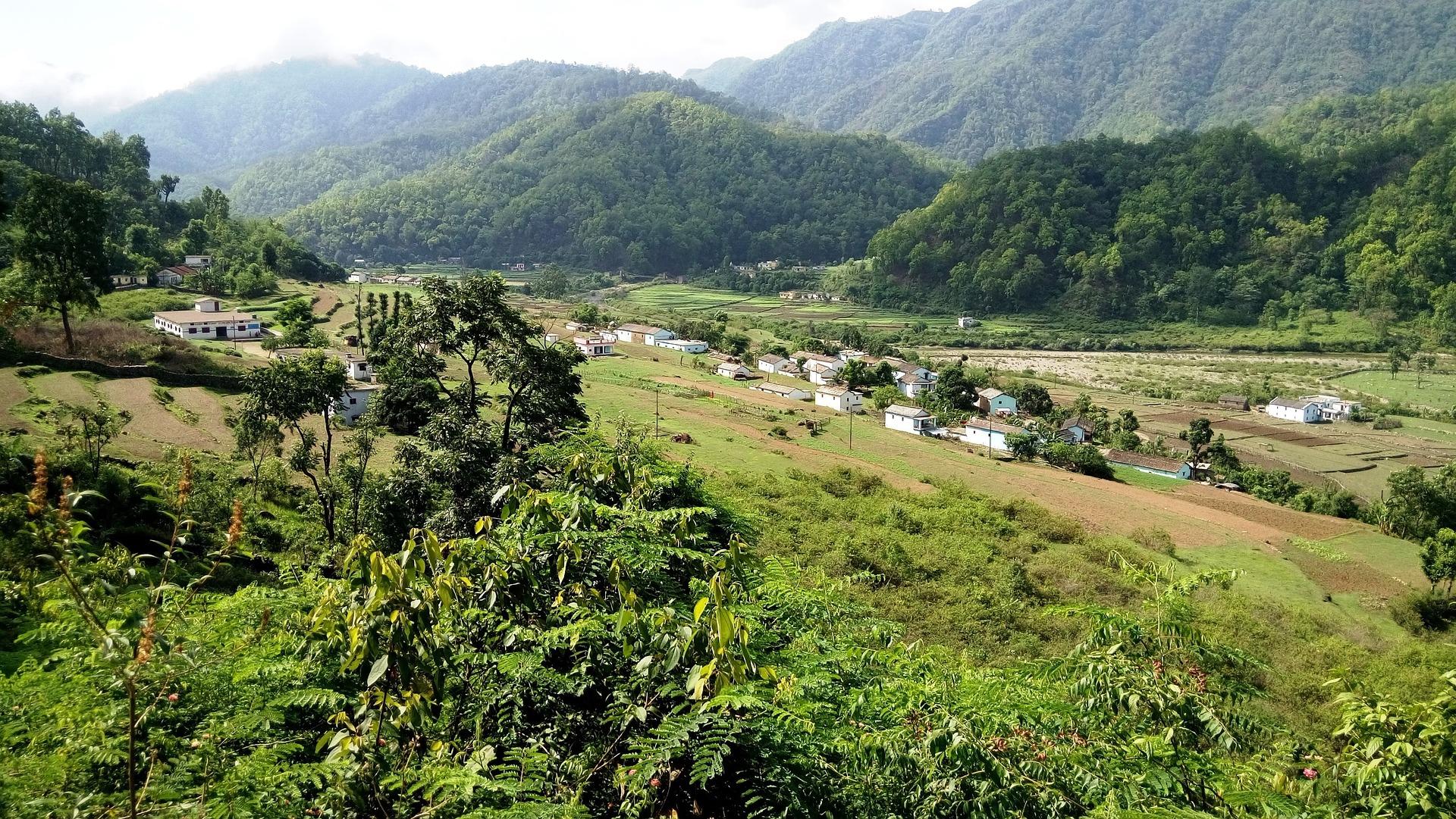 India Jungle nature 2705271 1920 1